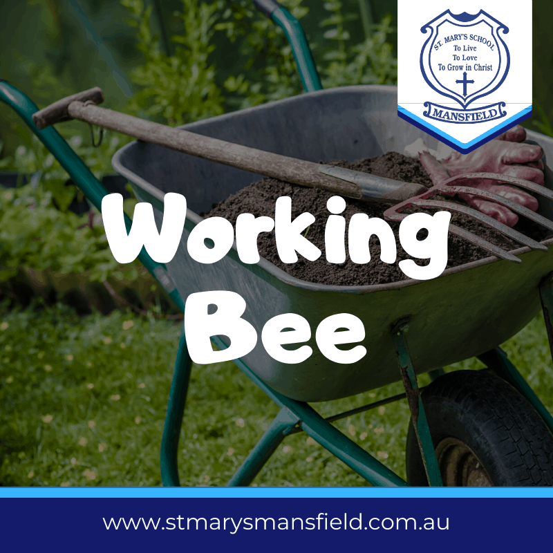 St Marys PRimary School Working Bee - Nov 29th 2019